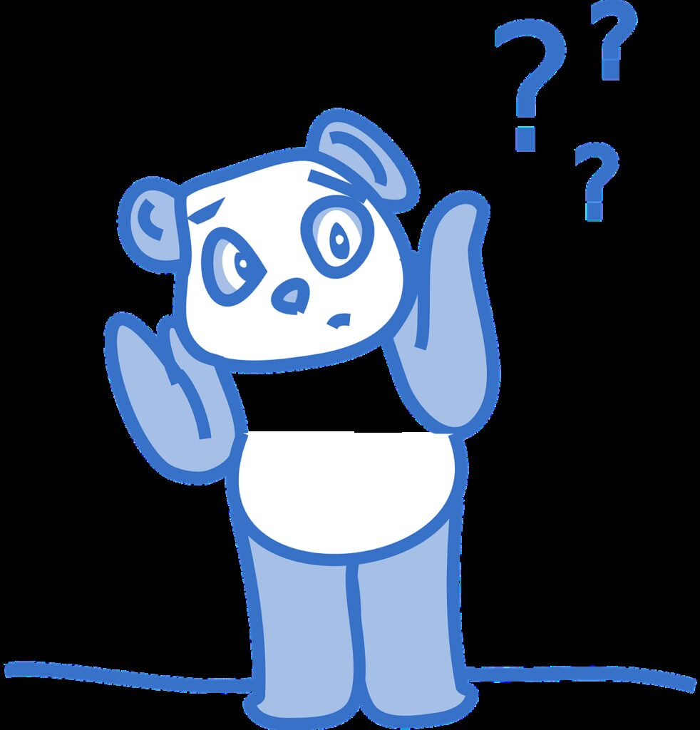 panda, confused, questions