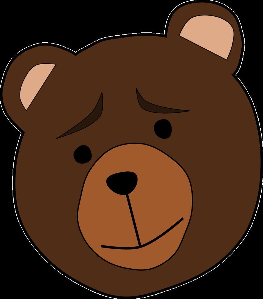 animal, bear, face